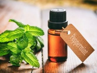 Peppermint oil in glass container with leaves beside it on wooden table