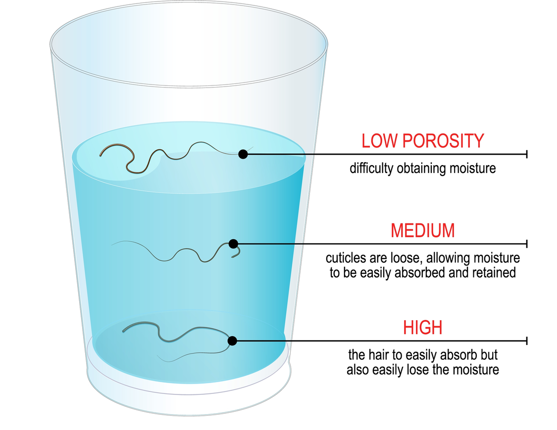 How to perform a hair porosity test graphic with a cup of water and strands of water